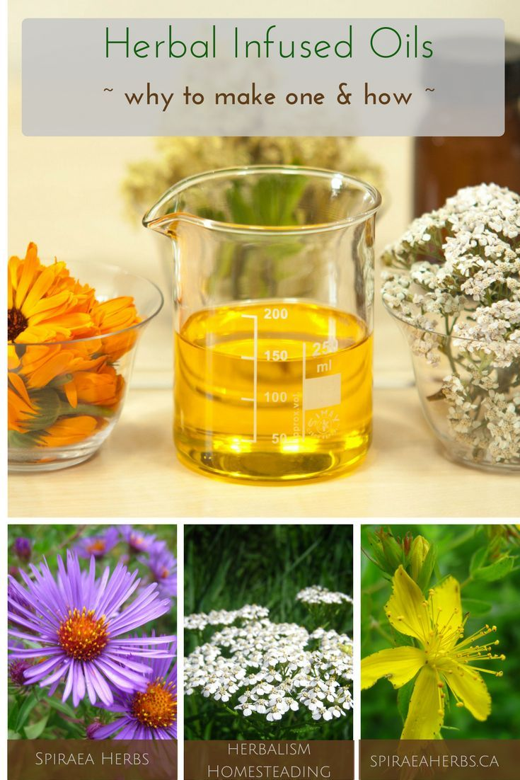 Herbal Infused Oils - why to make one and how | Spiraea Herbs