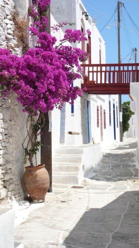 Summer ,Sifnos Island - Greece