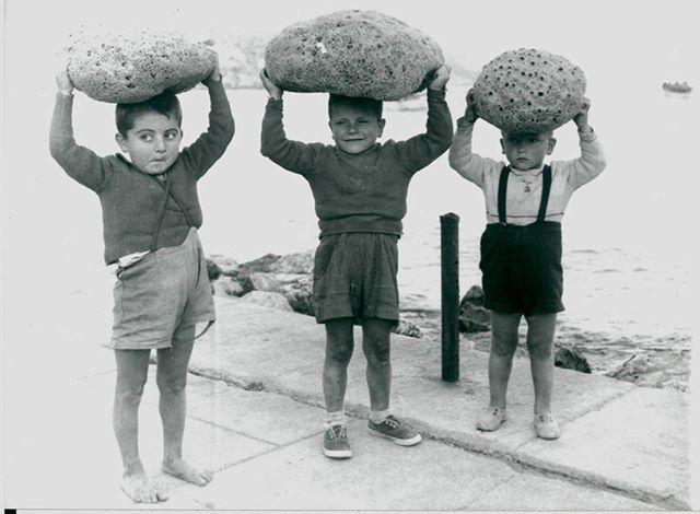 Κάλυμνος 1954 πρακτ.Ηνωμ.Ποτερ