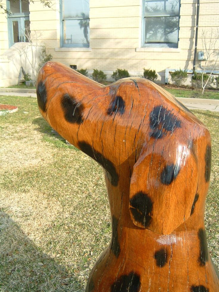 Tree Stump Galveston Is Of A Dalmatian Dog And Is