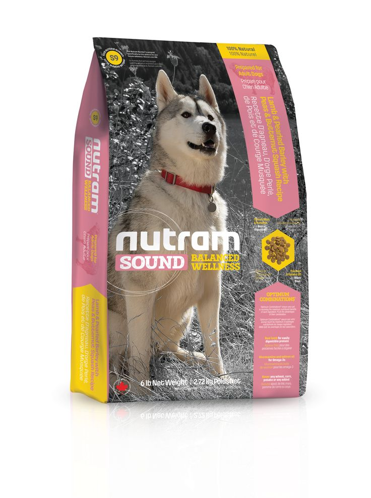 Dog Food That Starts With Ak