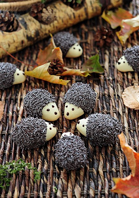 "Hedgehog Cookies via this blog, ""Tortelina""."