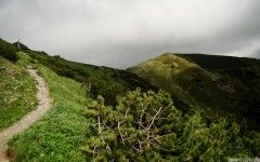 Path to mountain hut, National Park Nízke Tatry (Low Tatras), Slovakia