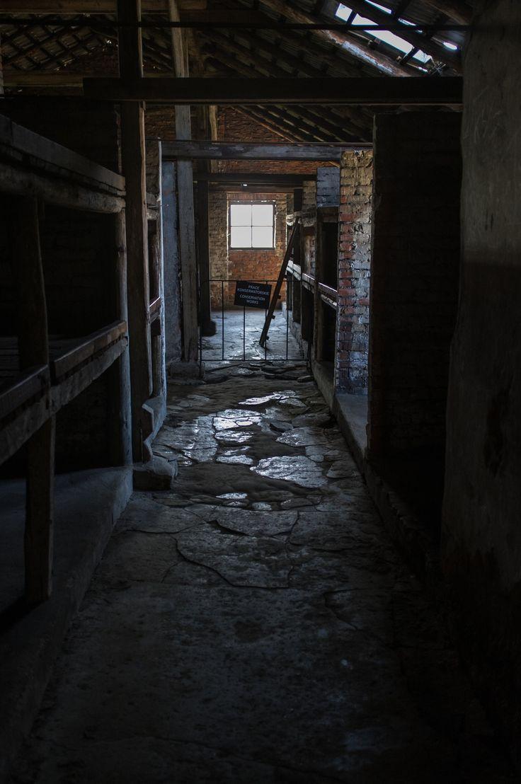 A visit to Auschwitz by Christian Skog - Exposure
