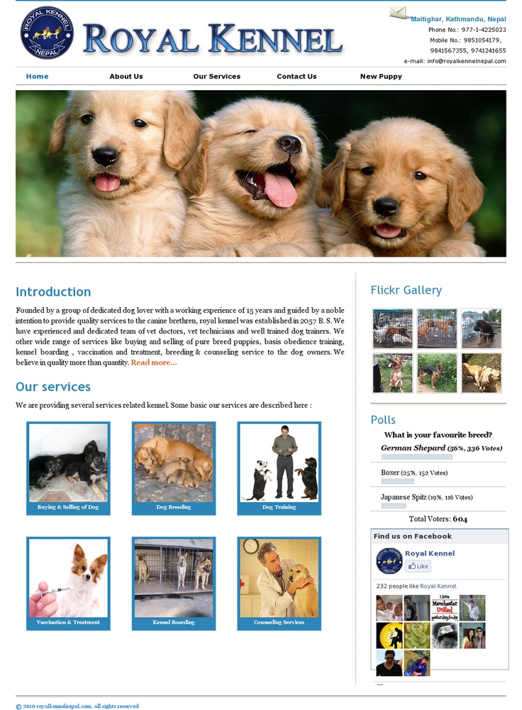 1000 images about design kennel sites on pinterest for Dog boarding website