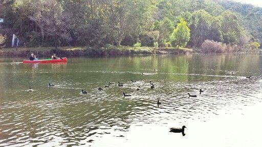 Audley Park