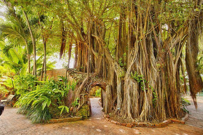 5. Key West Garden Club, West Martello Tower, Key West - Secret Gardens in Florida (technically not in Miami but still in South Florida)