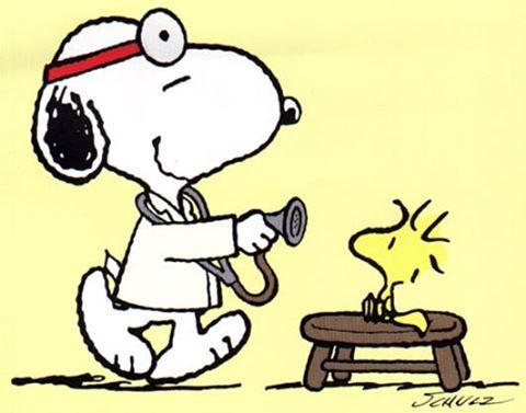 I could use Dr. Snoopy about now