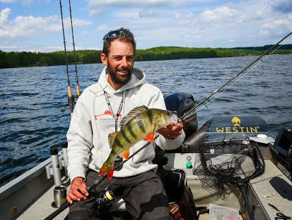 #Perch #Fishing in #Sweden - #Barsch #Angeln in #Schweden http://www.fishing-in-sweden.com