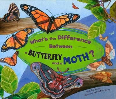 Do you know the differences between a butterfly and a moth? One animal has furry feelers and a chubby body. The other has clubbed feelers and a thin body. Find out which animal is which.
