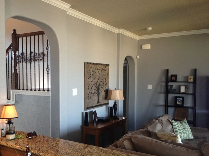 behr living room colors paint behr sparrow a true grey when the paint was 14457