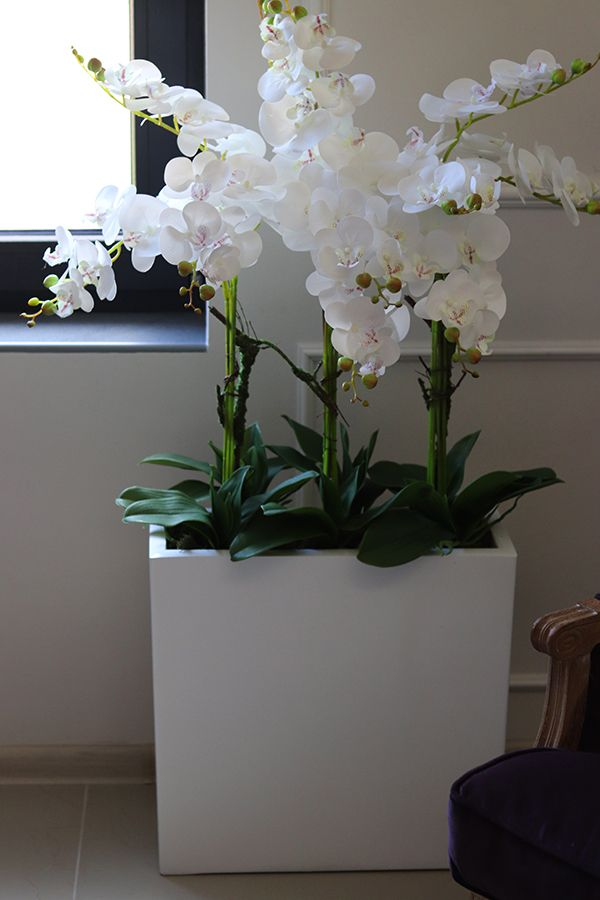 Pin On Sztuczne Kwiaty Doniczkowe