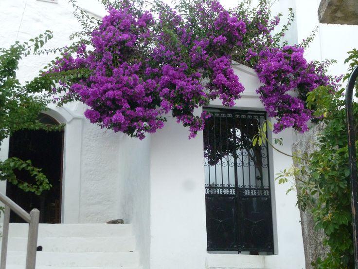 Skyros island, Greece.