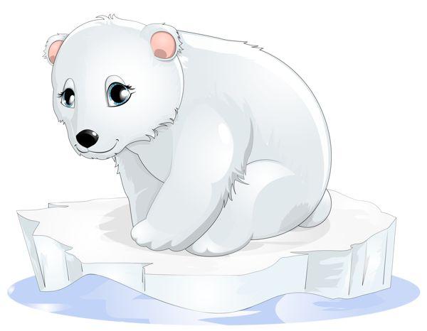 Polar Bear Transparent Clipart