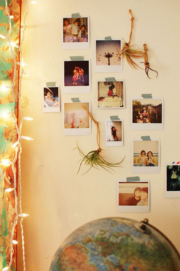 air plants hanging on the wall with some beautiful polaroids and fairy lights