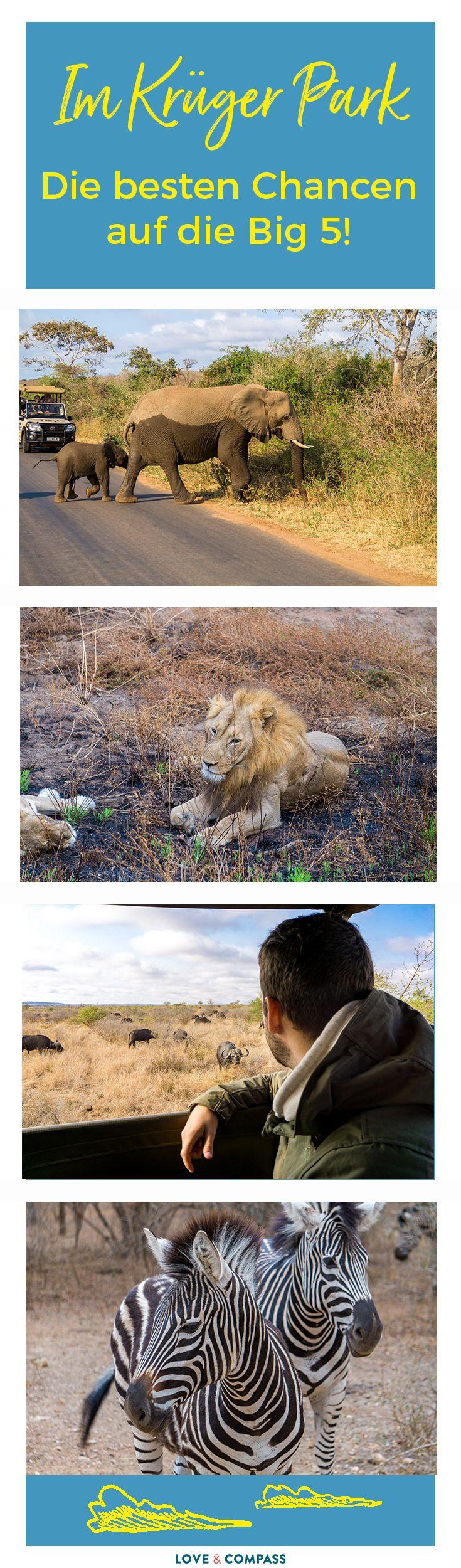 Zu jeder Südafrika Reise zählt eine Safari zu den Must Do´s! Eine der beliebtesten Ecken dafür ist der Krüger Nationalpark. Kein Wunder, denn hier besteht die größte Chance alle Big 5 Tiere während einer Safari zu sehen. Deshalb findet ihr in diesem Beitrag alle wichtigen Tipps & Infos. Zum Beispiel zu Themen wie Malaria, Mückenstiche und Ausrüstung.