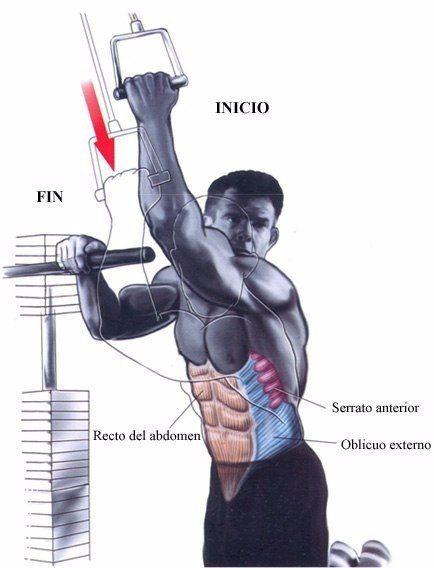 Качаем мышцы пресса