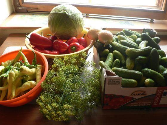 Lak nechat schladnout na pokojovou teplotu,okurky proložit plátkem cibule,okvětí kopru,2 až 3 kolečk...