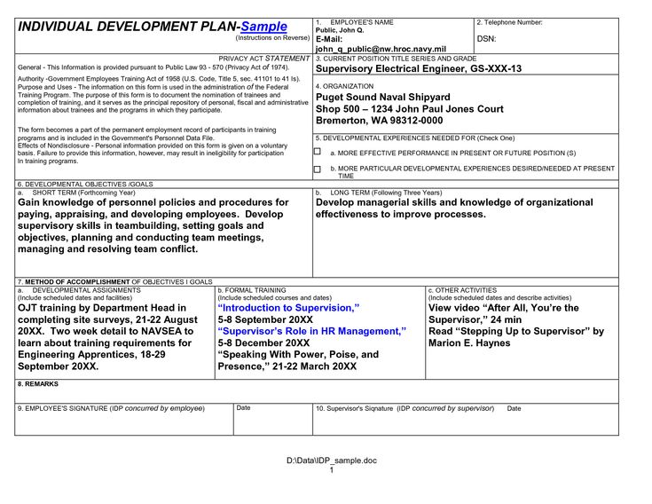 Individual Development Plan Sample UnqDsmd  Business