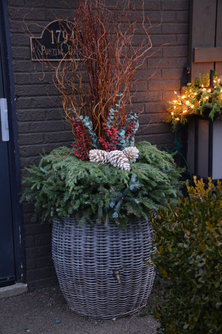 Christmas window box filler - A Client Who Is Out Of Town On Holiday Did Not Mind If Her Winter Pots Did Not Get Done Until After