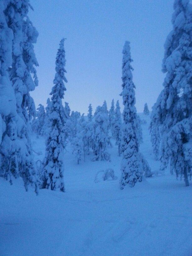 Finland Levi snowboarding