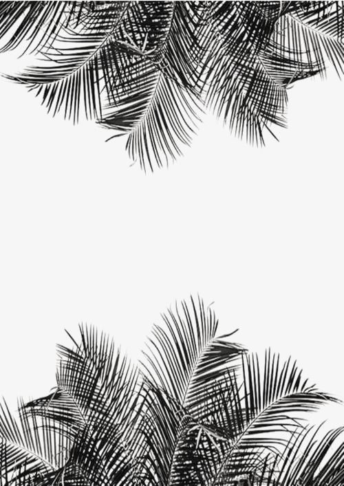 Sketch Leaf Simple Palm Leaves Beach Png Transparent Image And Clipart For Free Download Plant Wallpaper Art Wallpaper
