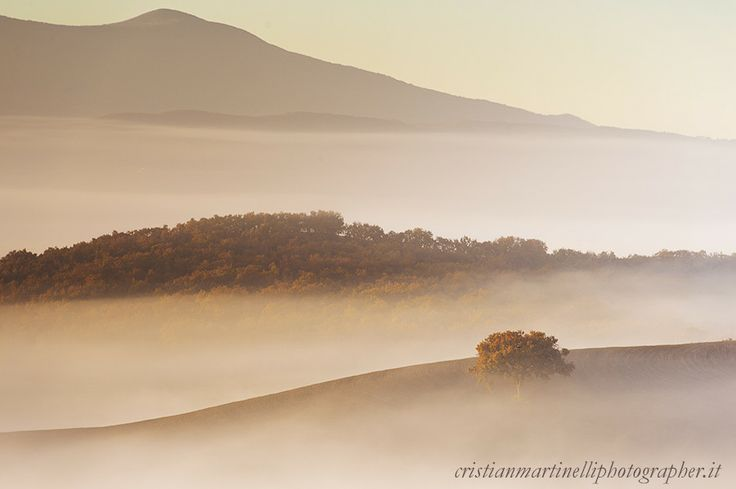 Hide by Cristian Martinelli on 500px