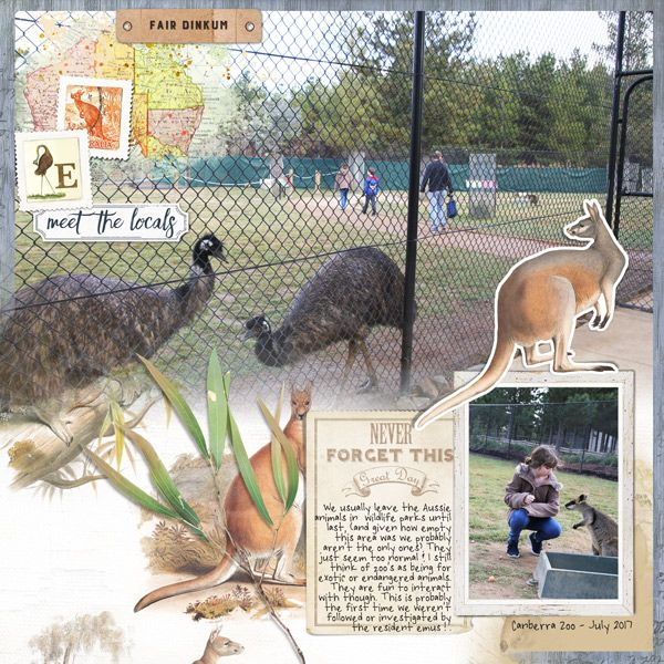 meet the locals Australian zoo scrapbook page by Justine with The Lilypad products  #2photos