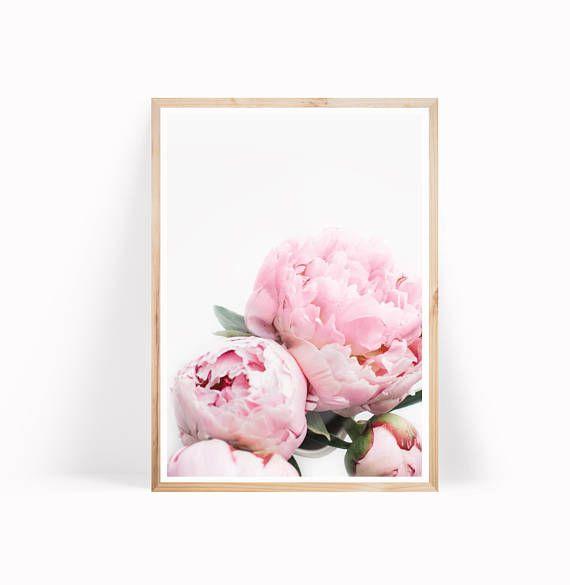 Fein Bluebonnet Blume Malseite Bilder - Framing Malvorlagen ...