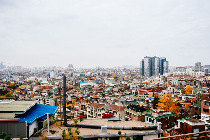 동네에서본 서울