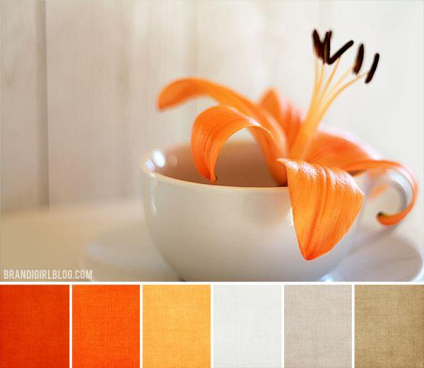 color pallete with orange   Color Palette #84 :: Orange Lily :: Brandi Girl Blog