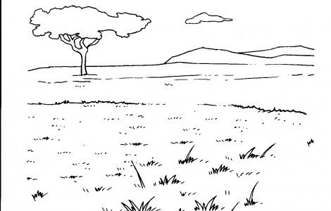 savanna trees coloring pages - photo#11