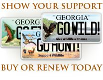 7 best habitats of georgia images on pinterest science for Georgia hunting and fishing license