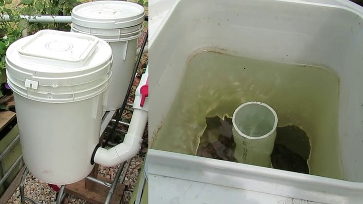 61 best images about aquaponics aquaculture on for Aquaponics filter