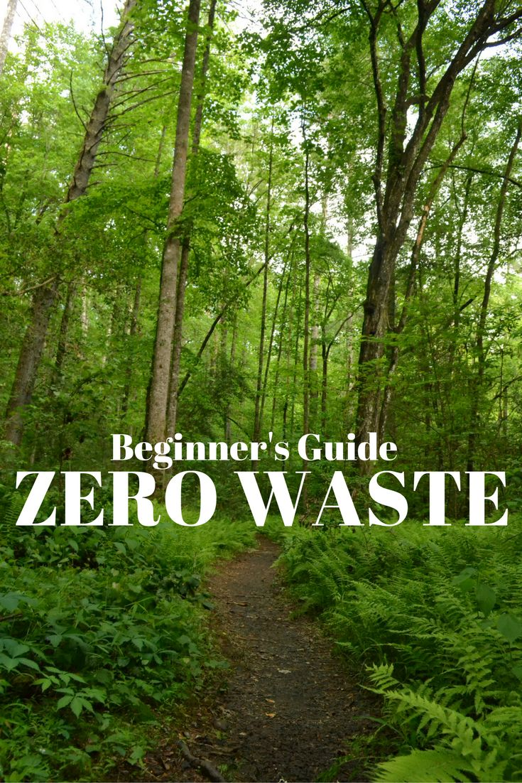 beginner's guide to zero waste living!