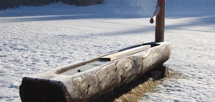How to Make a Log Water Trough | eHow