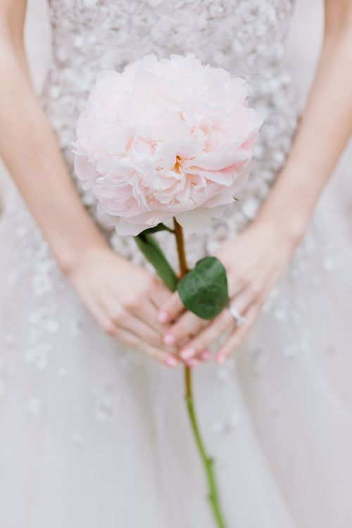 giant peony single flower bouquet sparkly dress