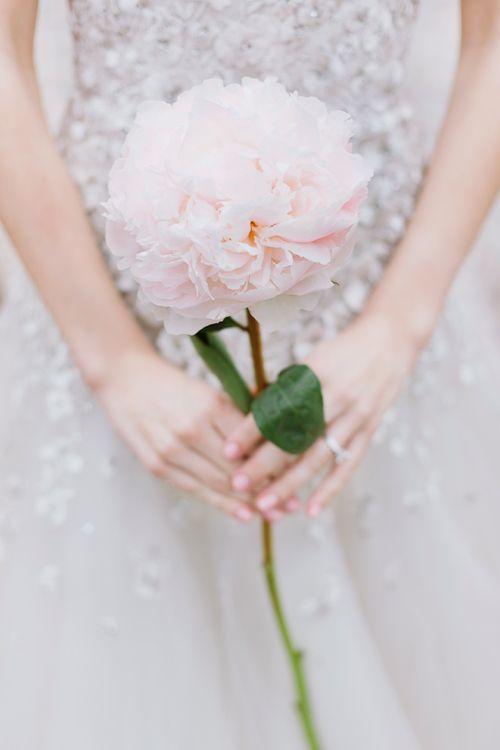 giant peony single flower bouquet sparkly dress