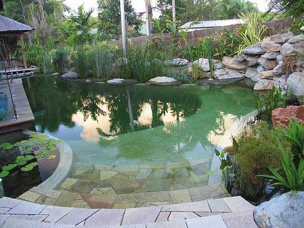 Fresh Water Pool Love The Look And The Idea Of No Chemicals Natural Swimming Ponds Natural Swimming Pools Natural Pool