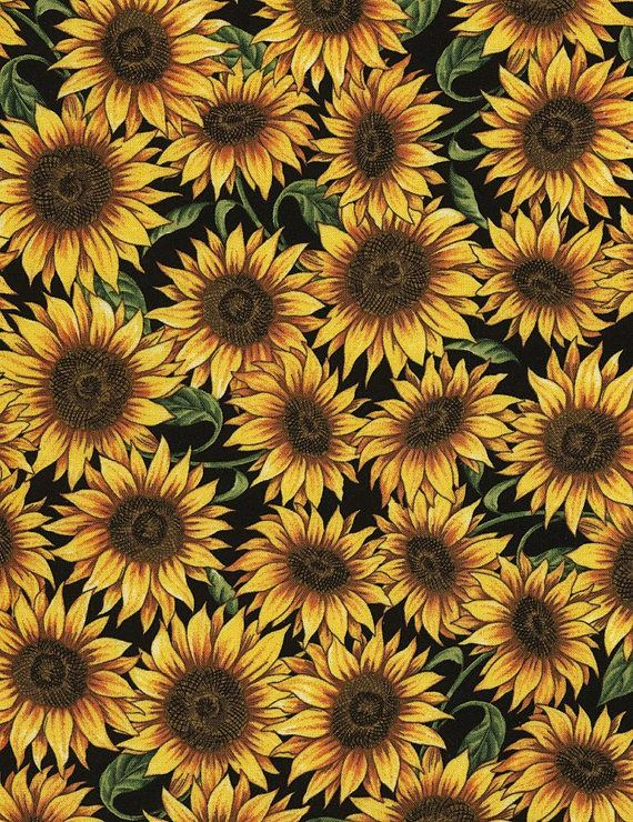 Bountiful Autumn Sunflower Floral wMetallic Fat Quarter Timeless Treasures