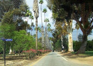 Victoria Avenue, Riverside California