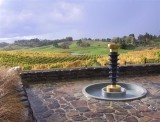 The art at the Woollaston Estates Cellar Door is as amazing as the views!