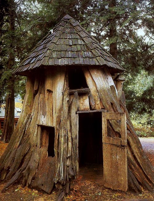 241 best images about tree house heaven on pinterest for Tree trunk uses
