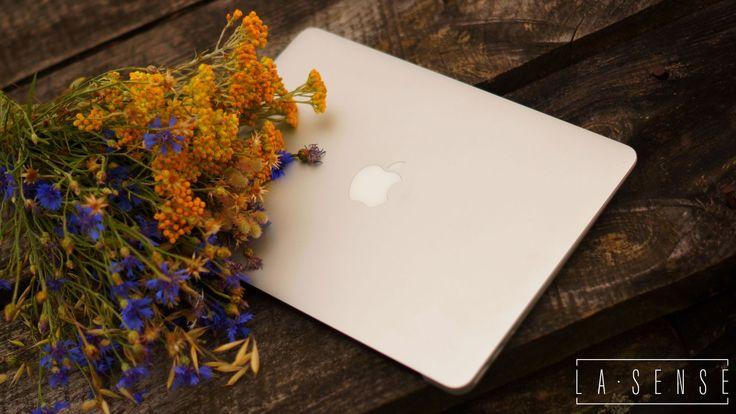 bridge#apple#flowers#my office#la sense photography#Bory Tucholskie#Poland#holiday#