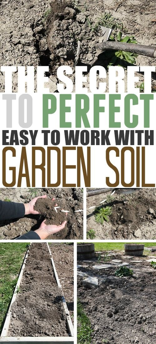 The secret to getting that perfect, easy to work with garden soil in your garden year after year!