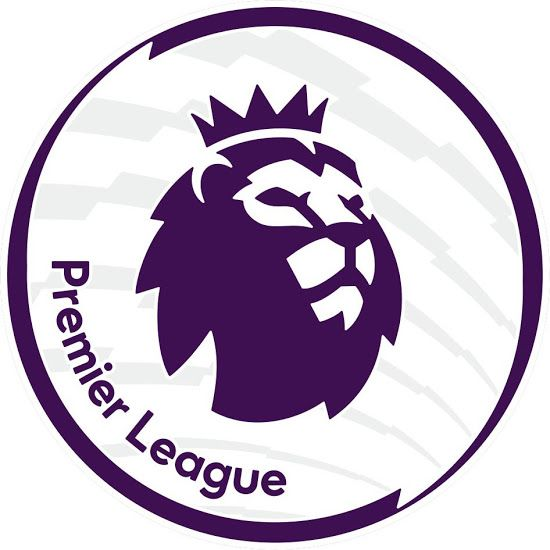 Official 2016-17 Premier League Sleeve Patch