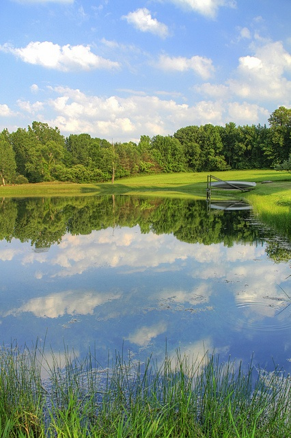 Farm Pond | Flickr - Photo Sharing!