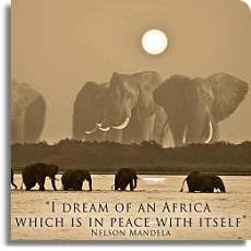 African Safaris and Adventures
