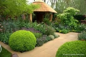 Chelsea flower show 2013 - Google Search