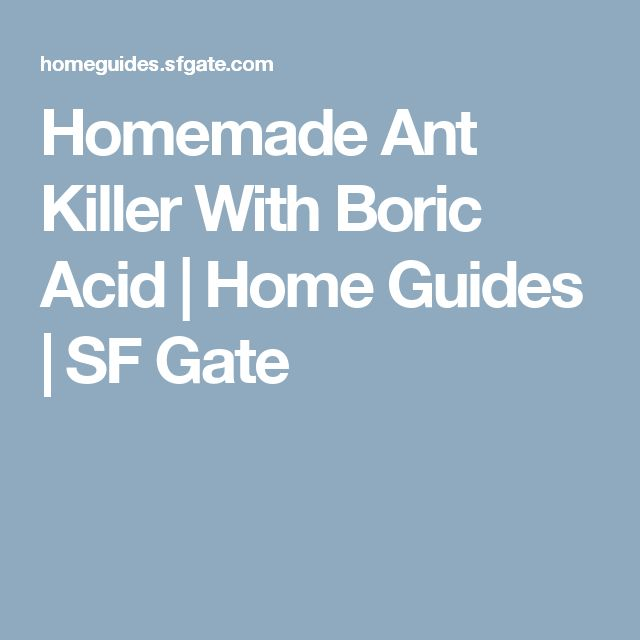 Homemade Ant Killer With Boric Acid | Home Guides | SF Gate